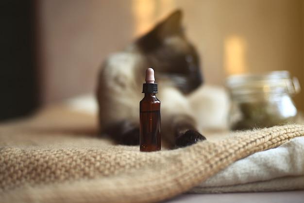 Flacon d'huile de cbd pour animaux en mise au point sélective et chat siamois en arrière-plan flou.