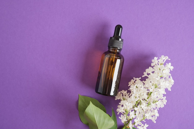 Flacon marron avec compte-gouttes pour huiles ou sérums cosmétiques et lilas blanc sur fond violet vif, cosmétiques naturels pour les soins de la peau du visage et du corps. vue de dessus de l'espace de copie