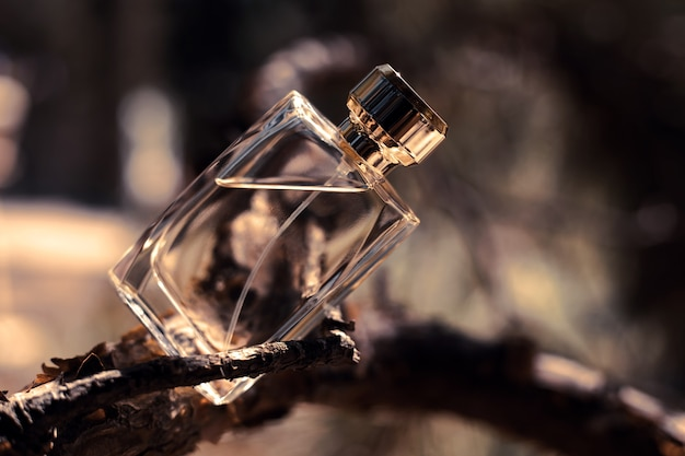 Flacon De Parfum Dans La Nature Photo Premium