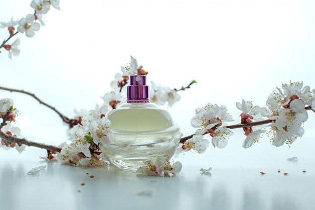 Flacon de parfum entouré de fleur d'abricot