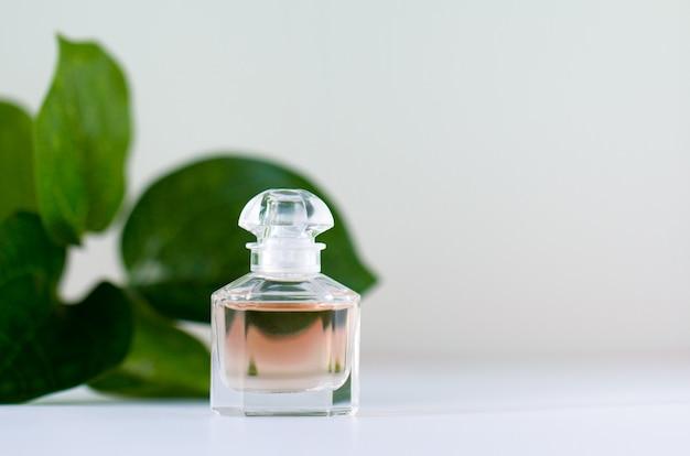 Un flacon de parfum sur une des feuilles vertes.