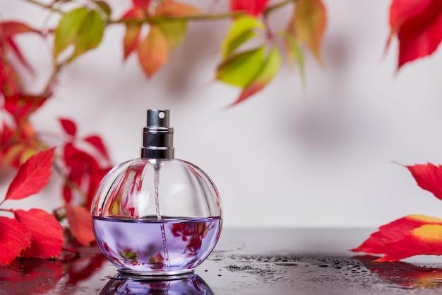 Flacon de parfum et parfum vintage sur une surface en verre noir entouré de feuilles d'automne de raisins sauvages et de gouttes d'eau, parfum d'arôme, cosmétiques parfumés et eau de toilette en tant que marque de beauté de luxe