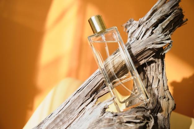 Flacon de parfum en verre sur un bois flotté, fond d'ombre naturelle, parfum aux notes boisées