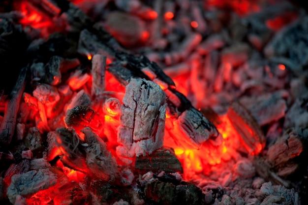 Flamme et charbons ardents, lac des bois, ontario, canada