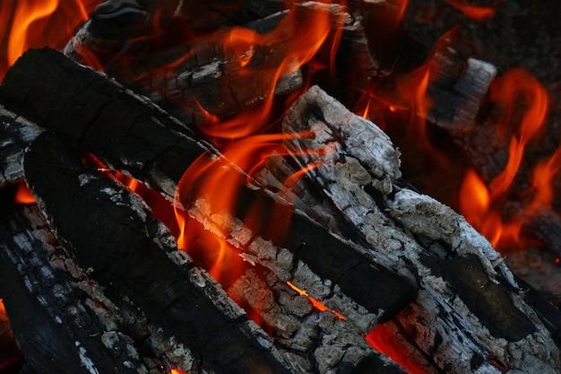 Flamme de feu de bois brûlant dans la cheminée