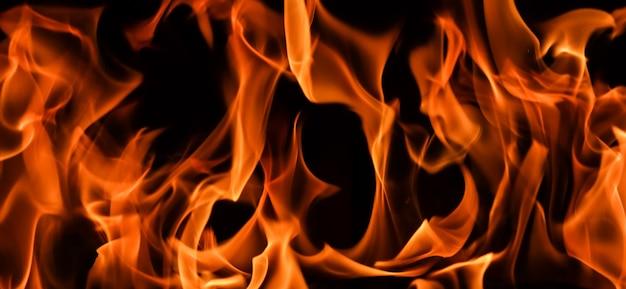 Flammes de feu sur fond noir le mystère du feu