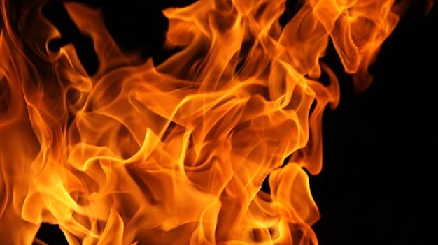 Flammes de feu isolées sur fond noir