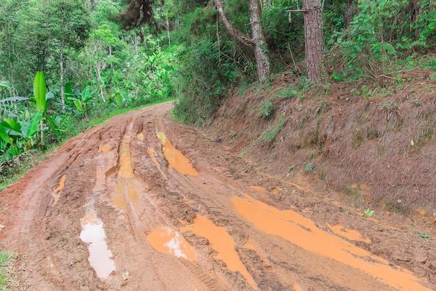 Flaques de pluie sur la route de campagne sale au printemps
