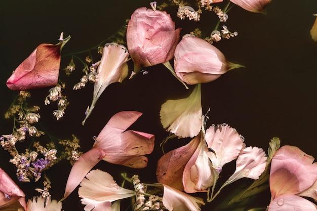 Flat lay délicates fleurs roses dans l'eau noire