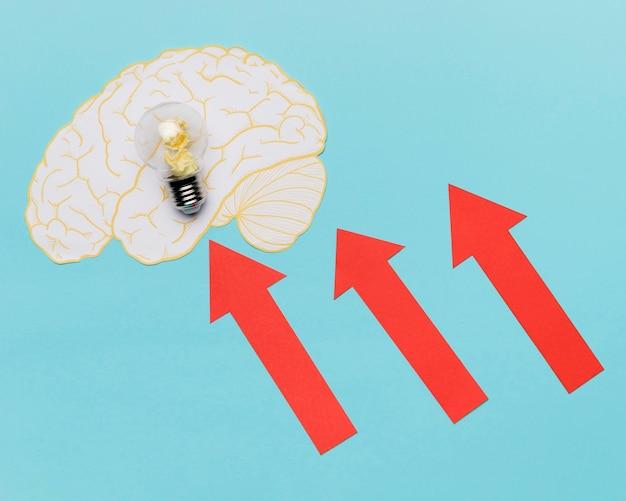 Flèches pointant sur le cerveau