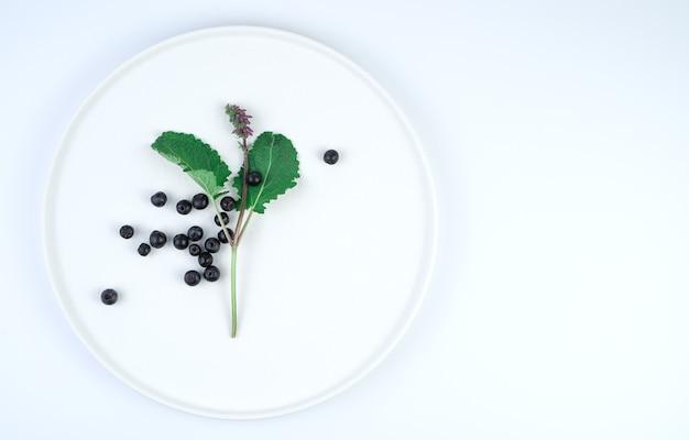 Fleur d'aronia sur une assiette plate
