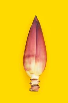 Fleur de bananier sur fond jaune.