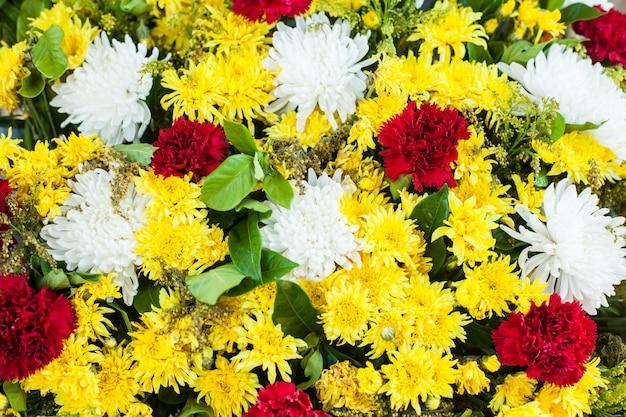 Fleur blanche, rouge et jaune