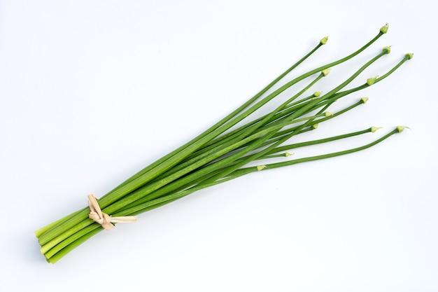 Fleur de ciboulette ou ciboulette chinoise sur une surface blanche