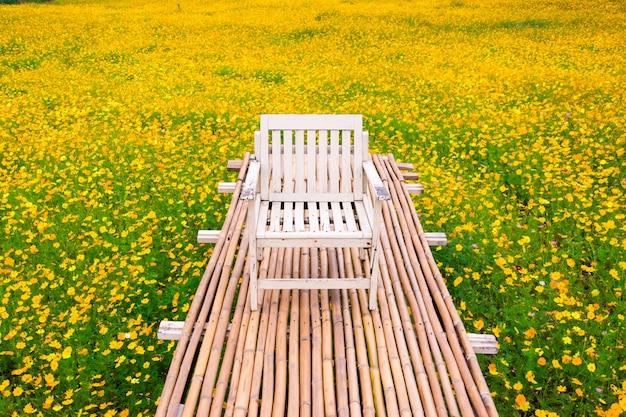 Fleur cosmos jaune avec passerelle
