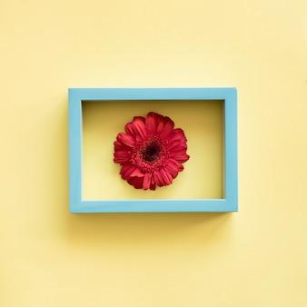 Fleur dans le cadre