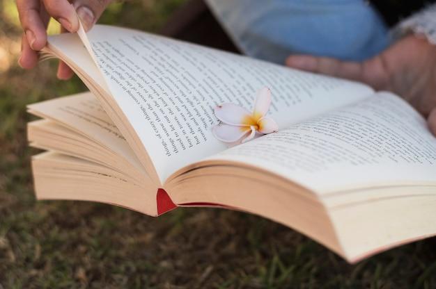 Fleur dans un livre ouvert