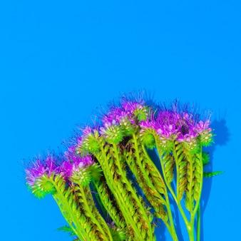 Fleur sur fond bleu style minimal