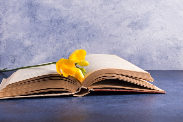 Fleur fraîche et livre ouvert
