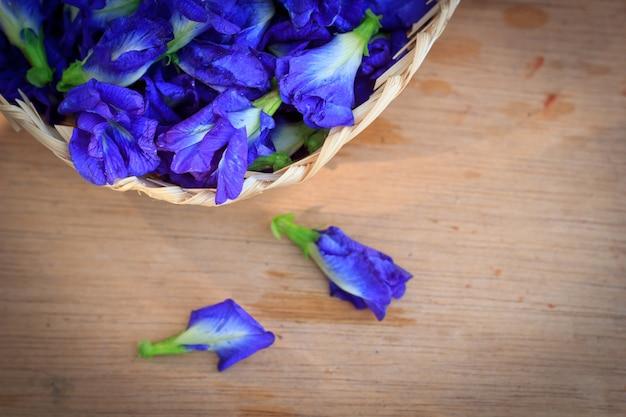 Fleur fraîche de pois papillon, clitoria ternatea sur planche de bois
