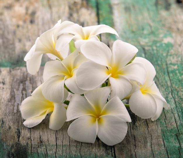 Fleur de frangipanier sur bois