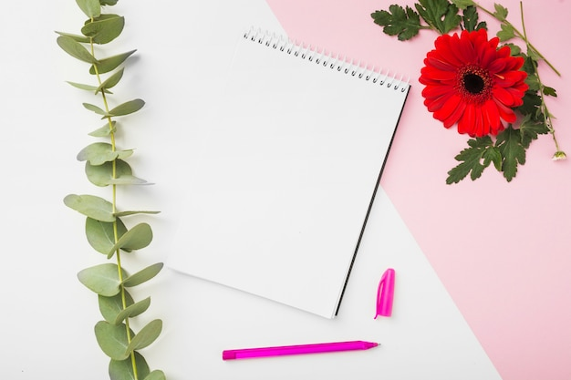 Fleur de gerbera; brindille; bloc-notes en spirale et stylo sur fond double