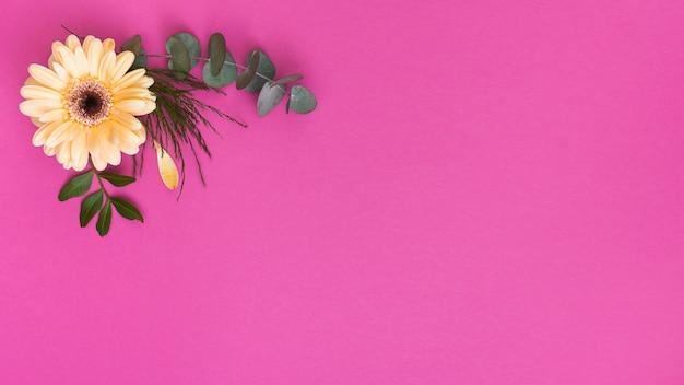 Fleur de gerbera jaune avec des branches vertes