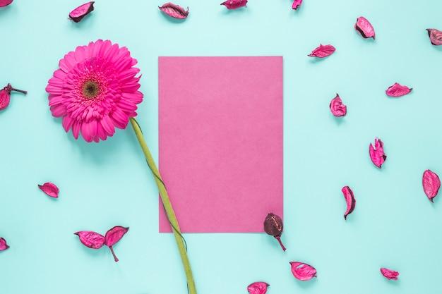 Fleur de gerbera rose avec du papier sur la table