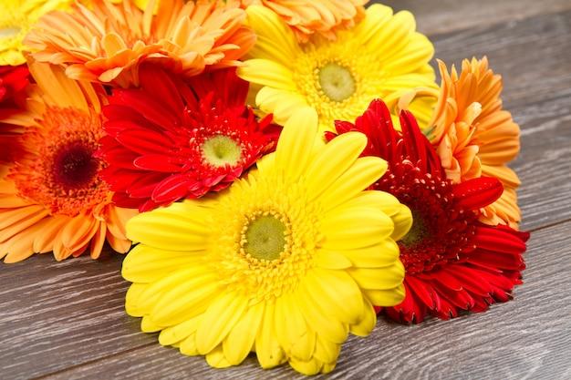 Fleur de gerberas