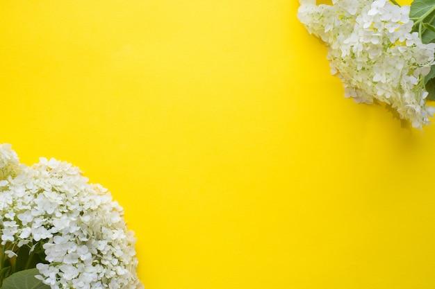 Fleur d'hortensia blanc sur fond jaune. concept d'été ..