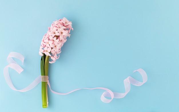 Fleur de jacinthe rose avec ruban rose sur fond bleu ciel. été, concept de printemps. célébration de holliday.