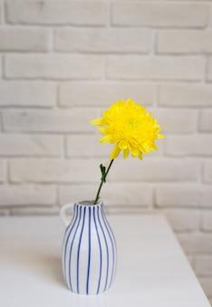 Fleur jaune unique fraîche dans un vase à pichet stylisé surface de texture blanche
