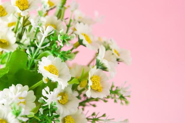 Fleur de marguerite sur fond rose