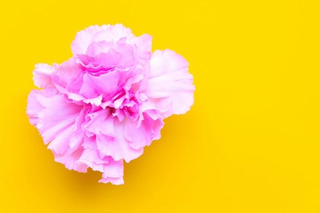 Fleur d'oeillet sur fond jaune. vue de dessus