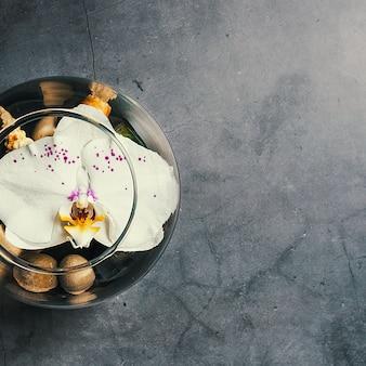 Une fleur d'orchidée flotte dans un aquarium circulaire