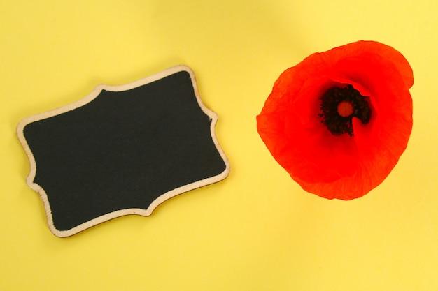 Fleur de pavot rouge et tableau sur un fond jaune pastel. copier l'espace pour le texte.