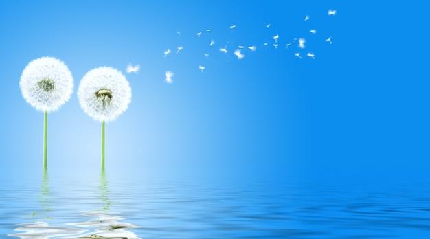 Fleur de pissenlit avec des plumes volantes sur fond bleu