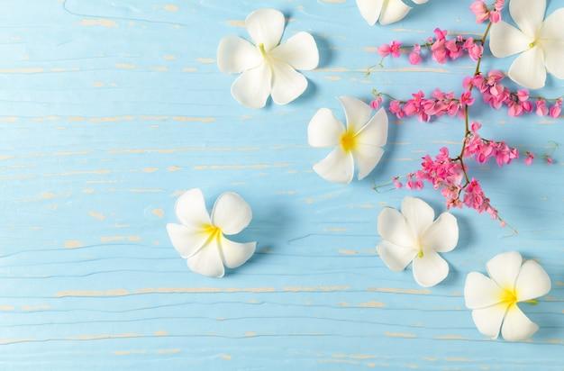 Fleur de plumeria blanche et fleur de liane rose