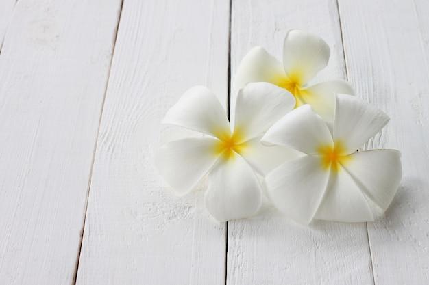 La fleur de plumeria en fleur est posée sur un plancher en bois blanc.