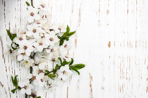 Fleur de printemps sur fond de bois