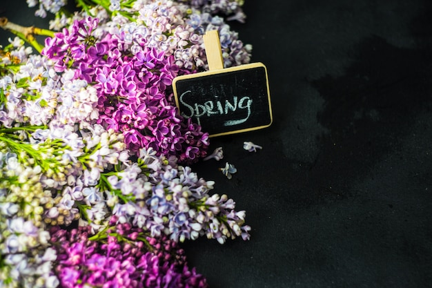 Fleur de printemps lilas