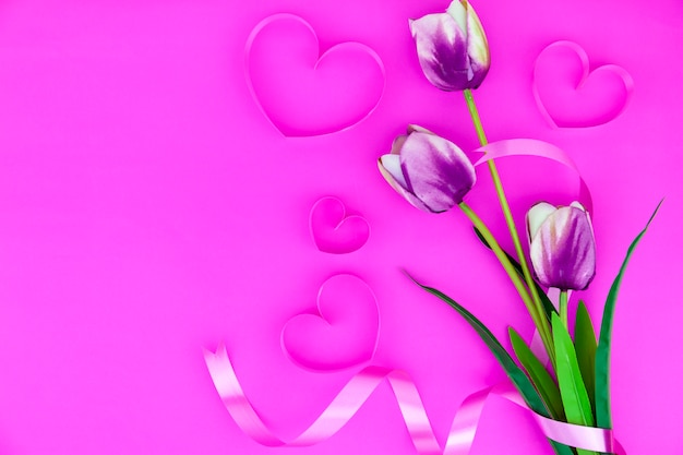 Fleur de printemps de multi couleur tulipes sur fond rose, plat image poser pour carte de voeux de vacances pour la fête des mères, saint valentin, le jour de la femme et espace de copie pour votre texte