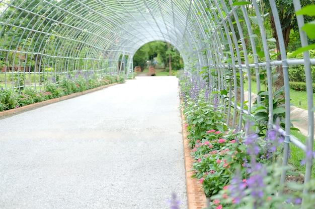 Fleur qui pousse dans un tunnel de légumes dans le jardin
