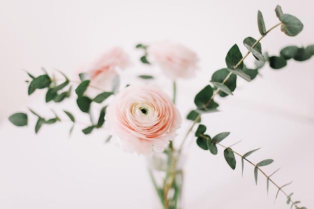 Fleur de renoncule rose