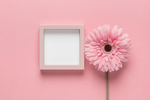 Fleur rose avec petit cadre