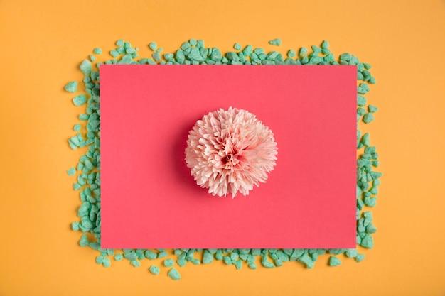 Fleur rose sur un rectangle rose avec des roches