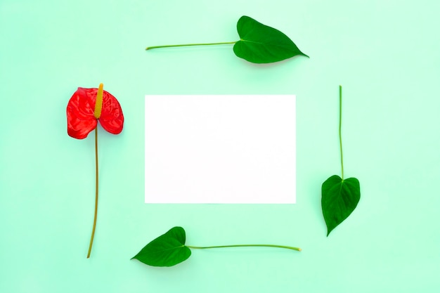 Une fleur rouge et des feuilles forment un cadre dans lequel un papier vierge.