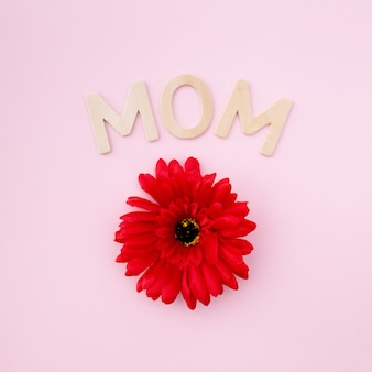 Fleur rouge pour la fête des mères