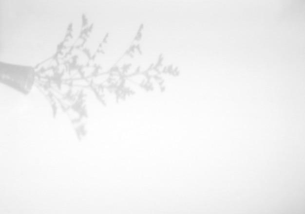 Fleur en superposition d'ombre de pot sur fond de texture blanche, pour superposition sur la présentation du produit, toile de fond et maquette, concept saisonnier d'été