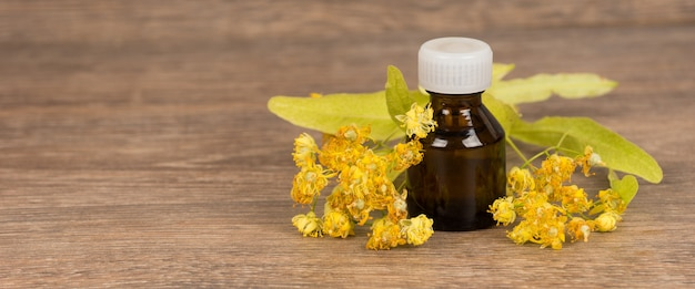 Fleur de tilleul avec bouteille en verre brun foncé. médecine alternative ou concept de guérison populaire.